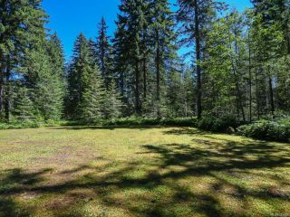 Photo 35: 3875 Dohm Rd in BLACK CREEK: CV Merville Black Creek House for sale (Comox Valley)  : MLS®# 791992