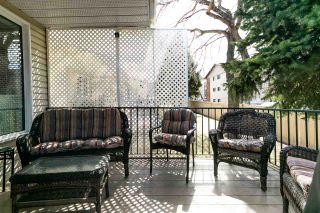 Photo 36: 10856 25 Avenue in Edmonton: Zone 16 House Half Duplex for sale : MLS®# E4238634