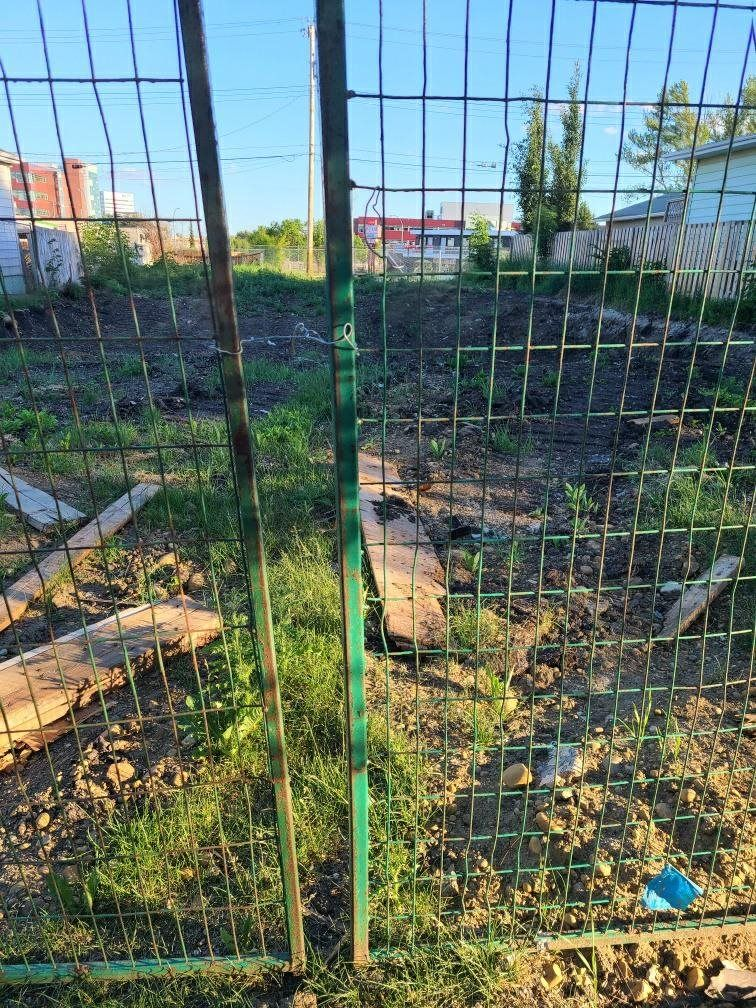 Main Photo: 10433/35 64 Avenue NW in Edmonton: Zone 15 Vacant Lot for sale : MLS®# E4251825