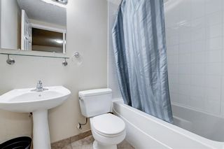 Photo 27: 4520 Namaka Crescent NW in Calgary: North Haven Detached for sale : MLS®# A1112098