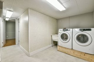 Photo 15: 3606 AZALEA Close in Abbotsford: Abbotsford East House for sale : MLS®# R2311893