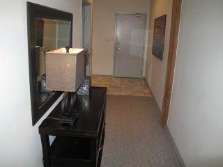 Photo 17: 167 Bannatyne Avenue in WINNIPEG: Central Winnipeg Condominium for sale : MLS®# 1118067