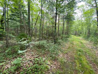 Photo 2: Lot 103 Highway in East Port L'Hebert: 406-Queens County Vacant Land for sale (South Shore)  : MLS®# 202115875