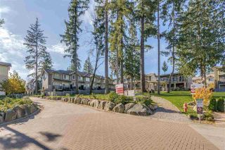 """Photo 1: 10 5957 152 Street in Surrey: Sullivan Station Townhouse for sale in """"PANORAMA STATION"""" : MLS®# R2423282"""
