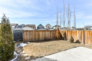 Photo 27: 368 Copperstone Grove SE in Calgary: Copperfield Detached for sale : MLS®# A1084399