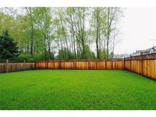 """Photo 10: 23899 119A Avenue in Maple Ridge: Cottonwood MR House for sale in """"COTTON/ALEXANDER ROBINSON"""" : MLS®# V946271"""