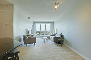 Photo 4: 1417 8710 HORTON Road SW in Calgary: Haysboro Apartment for sale : MLS®# A1091415