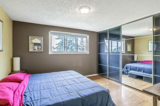 Photo 9: 1228 32 Street SE in Calgary: Albert Park/Radisson Heights Detached for sale : MLS®# A1135042