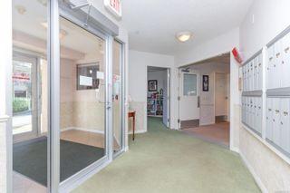 Photo 6: 102 3133 Tillicum Rd in : SW Tillicum Condo for sale (Saanich West)  : MLS®# 863118