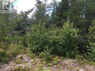 Photo 5: 11 Mitchview Estates in Conception Bay South: Vacant Land for sale : MLS®# 1232778