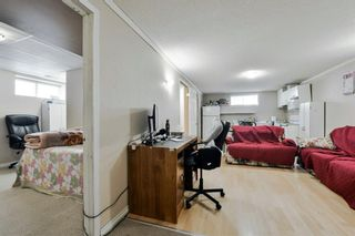 Photo 20: 10 Martha's Meadow Bay NE in Calgary: Martindale Detached for sale : MLS®# A1124430