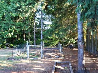 Photo 13: 3331 AUCHINACHIE ROAD in DUNCAN: Z3 West Duncan House for sale (Zone 3 - Duncan)  : MLS®# 380713