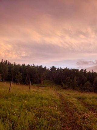 Photo 11: IN ROCKY VIEW COUNTY in Rural Rocky View County: Rural Rocky View MD Land for sale : MLS®# A1065924