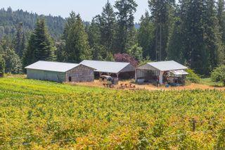 Photo 39: 304 Walton Pl in : SW Elk Lake House for sale (Saanich West)  : MLS®# 879637