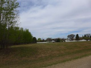 Photo 20: 50 Ave RR 281: Rural Wetaskiwin County Rural Land/Vacant Lot for sale : MLS®# E4191216