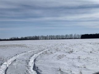 Photo 17: RR 25 HWY 661: Rural Westlock County Rural Land/Vacant Lot for sale : MLS®# E4236665