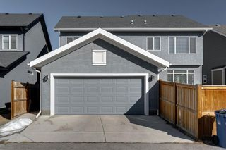Photo 43: 8215 9 Avenue SW in Calgary: West Springs Detached for sale : MLS®# A1081882