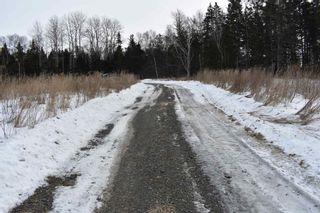 Photo 4: 414 Old Post Road in Clementsport: 400-Annapolis County Vacant Land for sale (Annapolis Valley)  : MLS®# 202102794