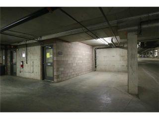 Photo 39: 5501 11811 LAKE FRASER DR SE in Calgary: Lake Bonavista Condo for sale : MLS®# C4099993
