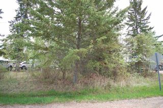 Photo 7: 3 3016 TWP 572 Road: Rural Lac Ste. Anne County Rural Land/Vacant Lot for sale : MLS®# E4247407