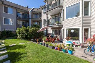 Photo 20: 116 3770 MANOR Street in Burnaby: Central BN Condo for sale (Burnaby North)  : MLS®# R2201954