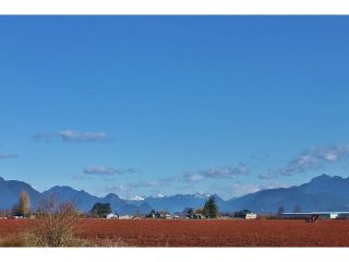Photo 2: Blueberry Farm FORD RD, Pitt Meadows in Pitt Meadows: West Meadows House for sale : MLS®# R2519795