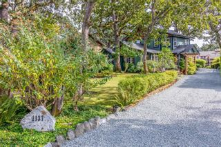 Photo 3: 1137 Nicholson St in : SE Lake Hill House for sale (Saanich East)  : MLS®# 884531