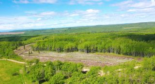 Photo 5: 13934 PACKHAM FRONTAGE Road: Charlie Lake Agri-Business for sale (Fort St. John (Zone 60))  : MLS®# C8039465