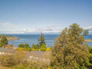 Photo 54: 3868 Gulfview Dr in : Na North Nanaimo House for sale (Nanaimo)  : MLS®# 871769