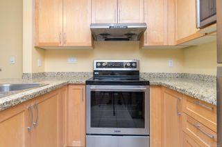 Photo 8: 505 827 Fairfield Rd in Victoria: Vi Downtown Condo for sale : MLS®# 884957