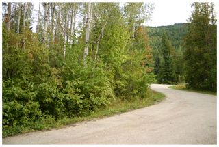 Photo 22: Lot 1 Eagle Bay Road in Eagle Bay: Eagle Bay Estates Vacant Land for sale : MLS®# 10105919