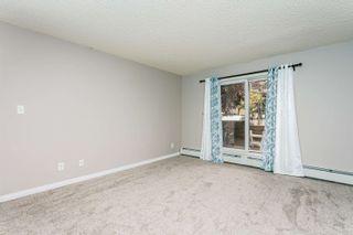 Photo 6: 124 4210 139 Avenue in Edmonton: Zone 35 Condo for sale : MLS®# E4254352