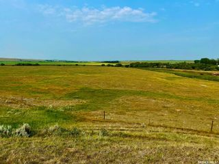 Photo 42: Unvoas Farm in Swift Current: Farm for sale (Swift Current Rm No. 137)  : MLS®# SK864766