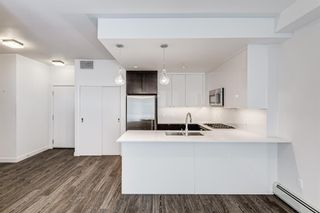 Photo 12: 218 305 18 Avenue SW in Calgary: Mission Apartment for sale : MLS®# A1127877