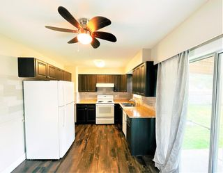 Photo 7: 11613 STEEVES Street in Maple Ridge: Southwest Maple Ridge House for sale : MLS®# R2556127