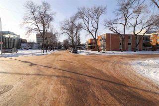 Photo 15: 10247 123 Street in Edmonton: Zone 12 House for sale : MLS®# E4229021