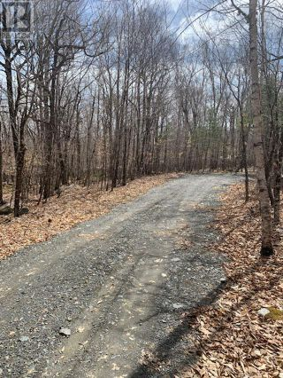 Photo 3: 82 8 Sparkling Spring Lane in Labelle: Vacant Land for sale : MLS®# 202111044
