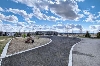 Photo 40: 8 Sage Way: Okotoks Detached for sale : MLS®# A1093928