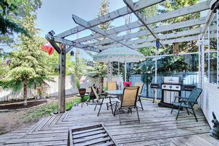 Photo 41: 131 Bridlewood Circle SW in Calgary: Bridlewood Detached for sale : MLS®# A1126092