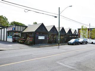 Photo 27: 2396 Heron St in : OB Estevan House for sale (Oak Bay)  : MLS®# 856383