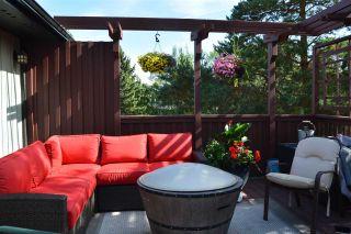 Photo 32: 12433 28 Avenue in Edmonton: Zone 16 House for sale : MLS®# E4245223