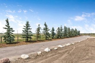 Photo 50: 275079 Township Road 240 in Rural Rocky View County: Rural Rocky View MD Detached for sale : MLS®# A1130907