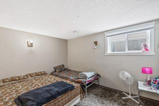 Photo 36: 4772 Rundlehorn Drive NE in Calgary: Rundle Detached for sale : MLS®# A1144252