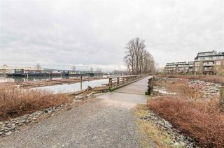 """Photo 28: 208 250 SALTER Street in New Westminster: Queensborough Condo for sale in """"PADDLERS LANDING"""" : MLS®# R2542712"""