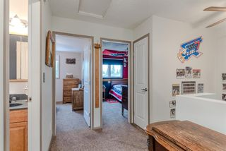 Photo 18: 123 Erin Woods Drive SE in Calgary: Erin Woods Detached for sale : MLS®# A1117498