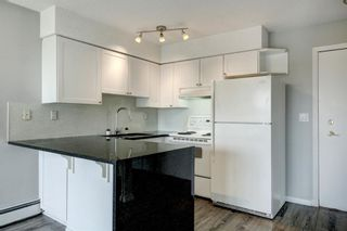 Photo 14: 402 2130 17 Street SW in Calgary: Bankview Apartment for sale : MLS®# A1104812