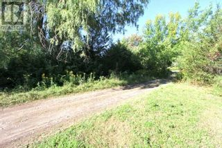 Photo 9: LT 3 SHORE RD in Brock: Vacant Land for sale : MLS®# N5357476