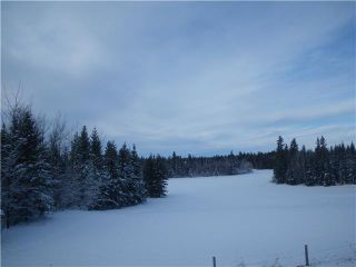 Photo 1: 314 55504 Rge Rd 13: Rural Lac Ste. Anne County Rural Land/Vacant Lot for sale : MLS®# E4213581