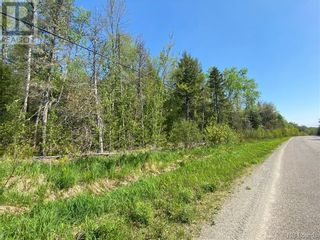 Photo 21: 5264 Rte 770 in Rollingdam: Vacant Land for sale : MLS®# NB058269