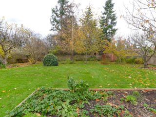 Photo 39: 353 Pritchard Rd in COMOX: CV Comox (Town of) House for sale (Comox Valley)  : MLS®# 747217